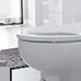 échantillon de toilette